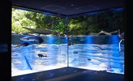 川崎水族館